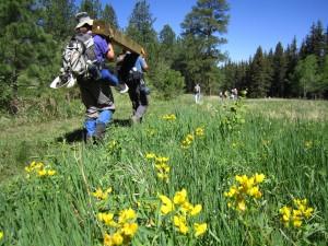 Colorado Trail Volunteer Trail Crews