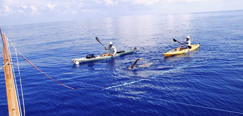 Diana Nyad swimming to Cuba